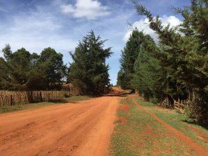 Kenya-Experience