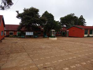 athletics-kenya-st-patricks